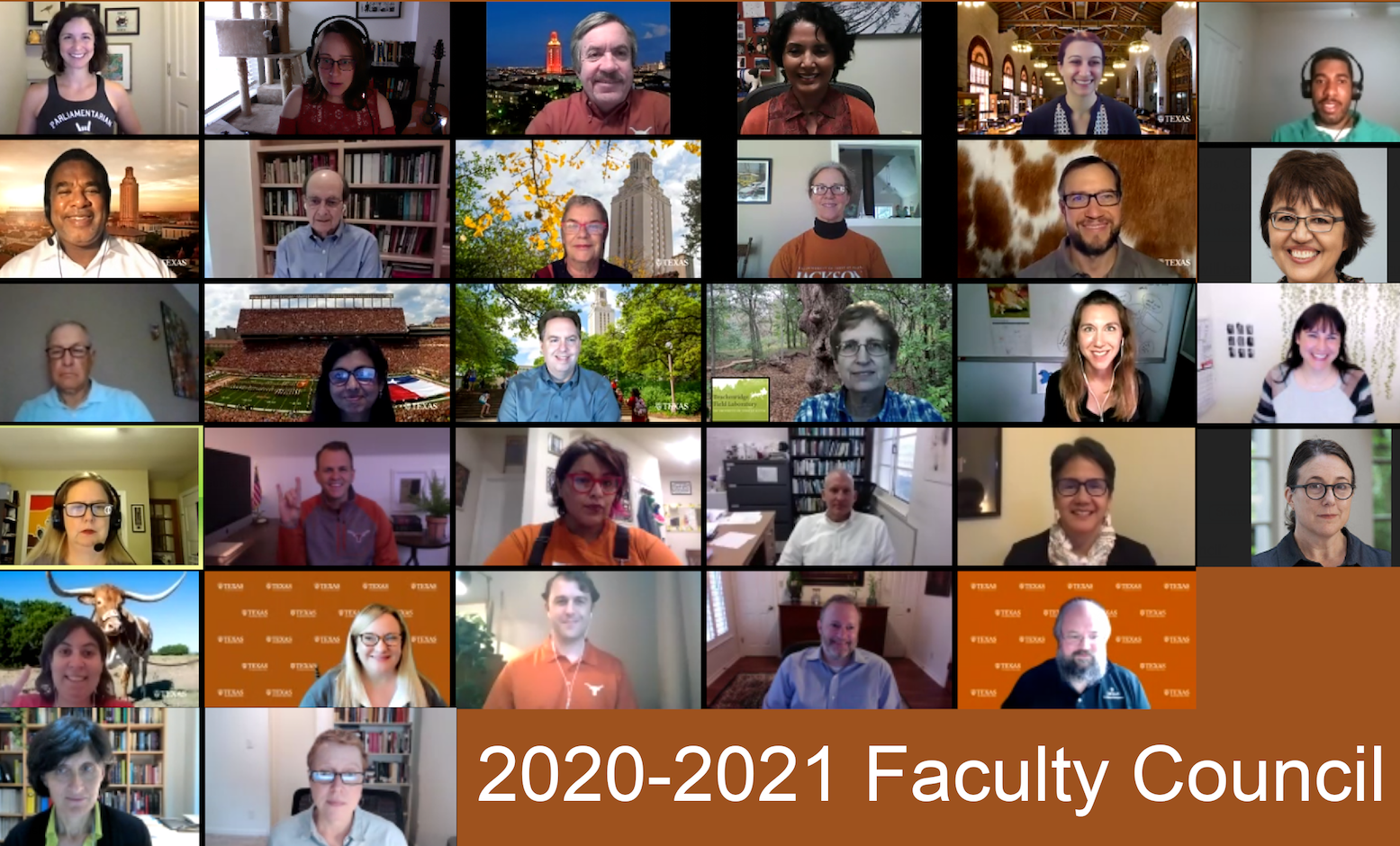 Picture of the 20-21 Faculty Council via Zoom
